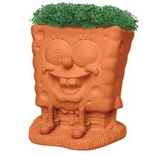 Chia Spongebob anyone?