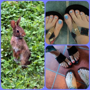 pedi collage