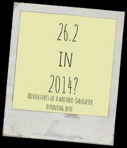 26 in 2014