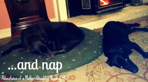 take naps.